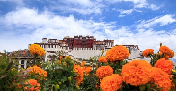 Tibet Photo Tour - 19 - The Potala Palace in Lhasa